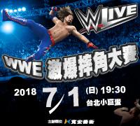 2018 WWE激爆摔角大賽